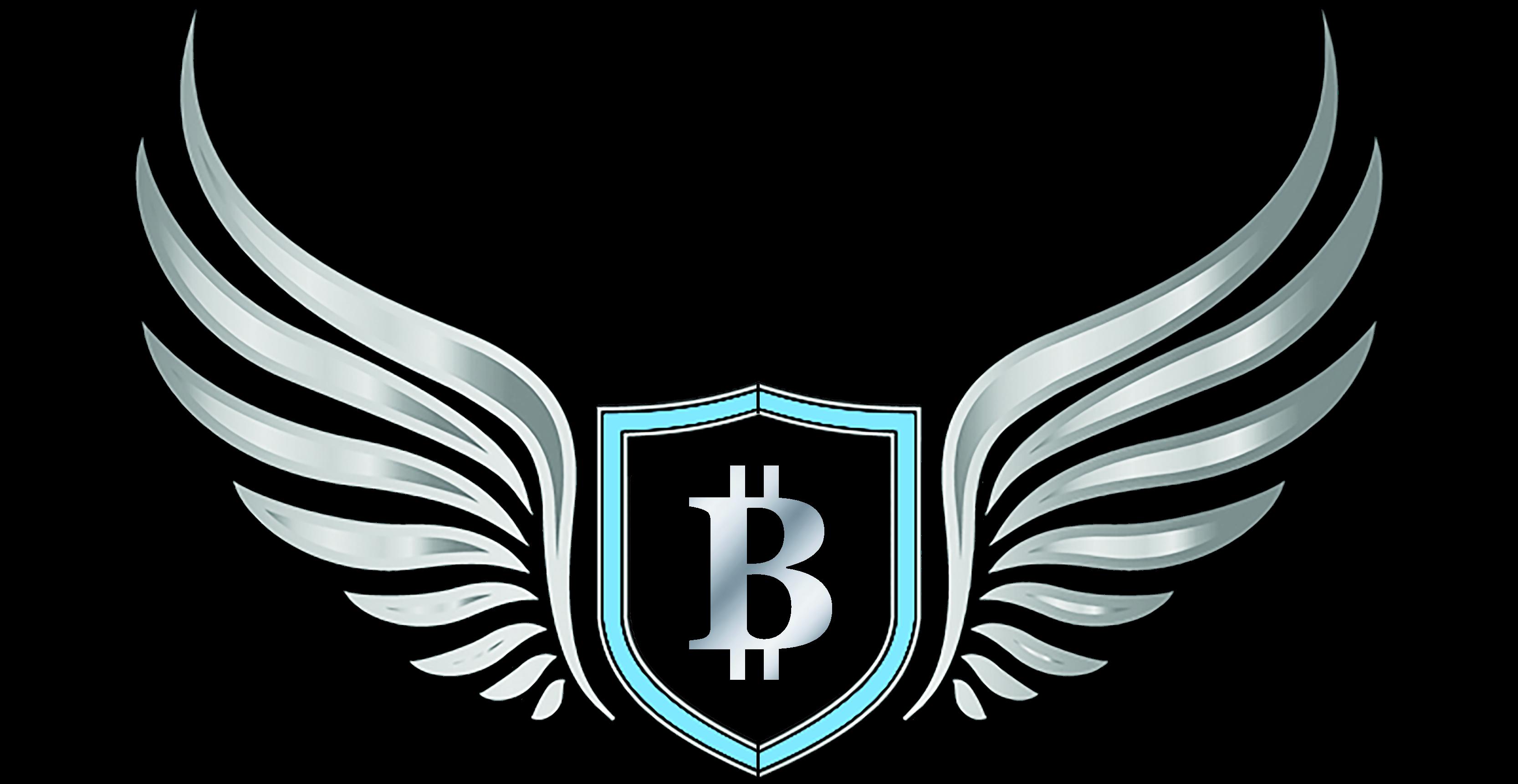 The Bitcoin Academy